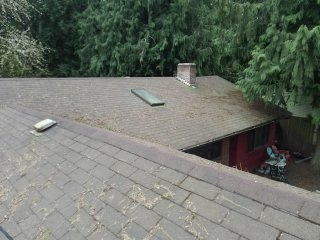 Poulsbo, WA - Pricing a metal roof. Customer has lots of tree needles so our standing seam metal is the way to go.