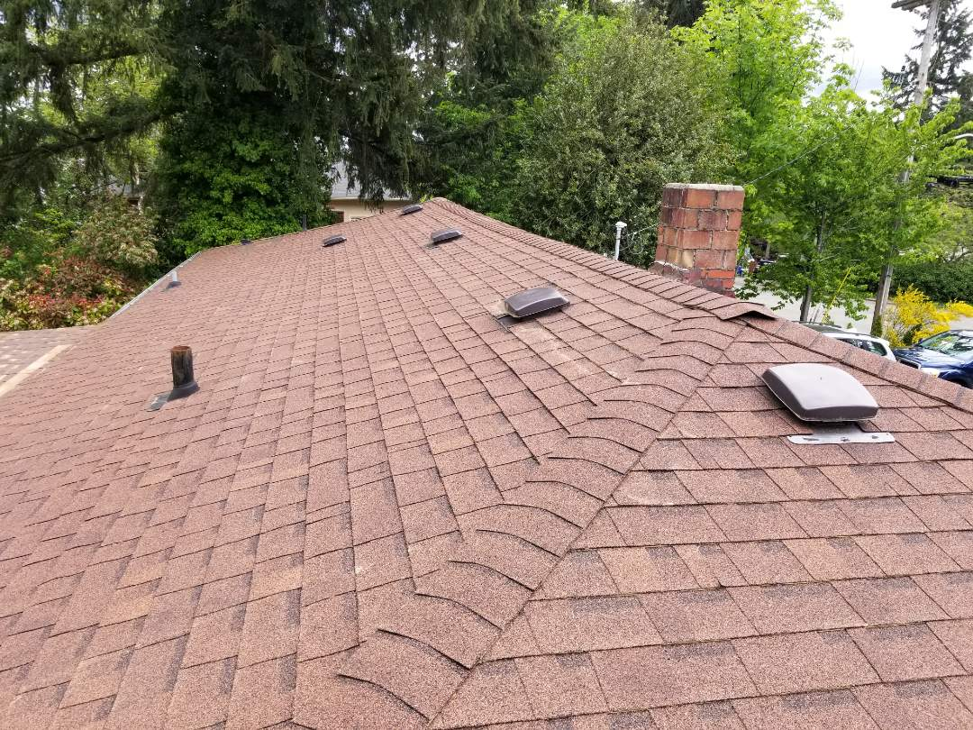 Bellevue, WA - 10yr old roof in Bellevue. The customer is tired of replacing their roof and want to know more about the Rubber Shingle.