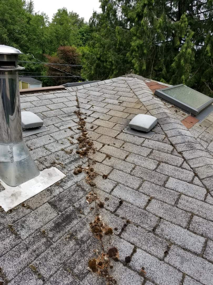 Kirkland, WA - Does your roof look like this? If so then call State Roofing for a free quote to replace it with a beautiful new roof.