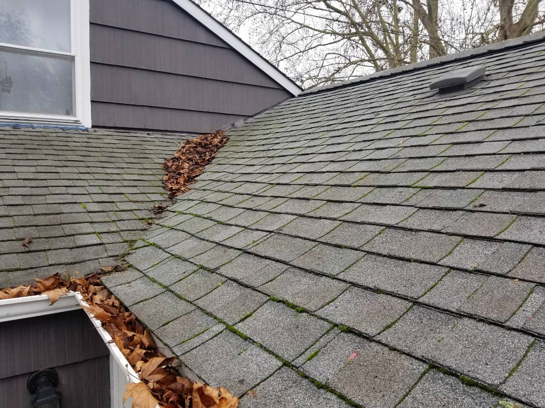 Seattle, WA - Roof leaking the day before Thanksgiving. State Roofing will be there to help advise you on 5he right product to replace your roof with.