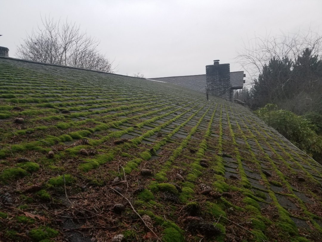 Mukilteo, WA - Working with a customer on a new roof estimate. There are many green roofing options other then most available. Metal roofs and recycled rubber are the top two. Call State Roofing for a free estimate. We are your trusted local Roofing Contractor.