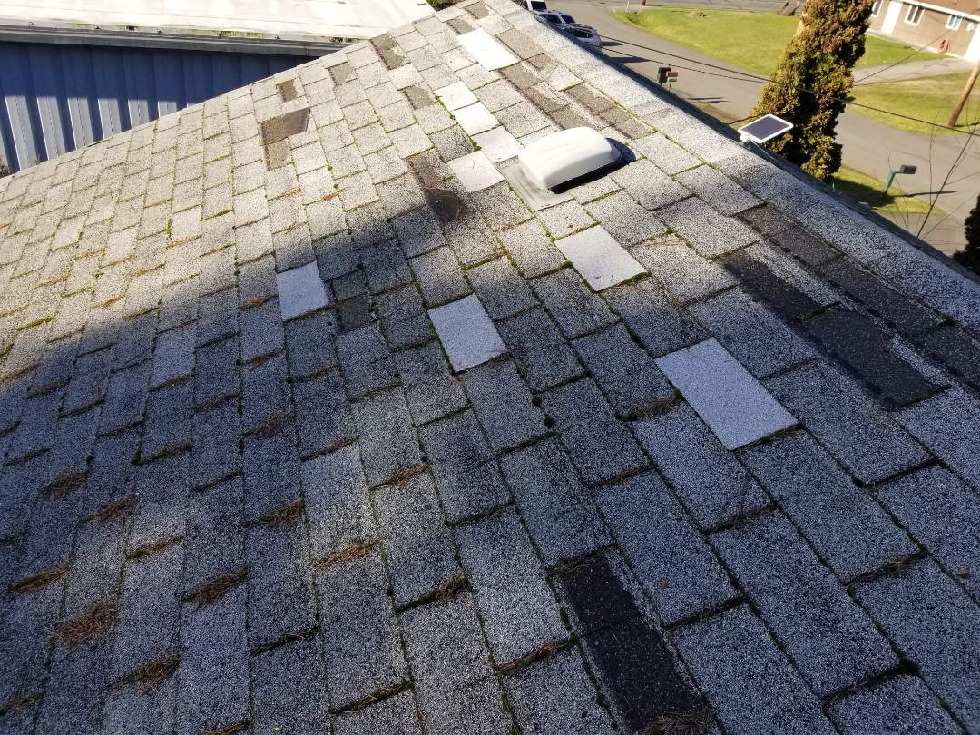 Lynnwood, WA - Missing shingles in Lynwood. State Roofing has replacement Roofing options to fit any budget.