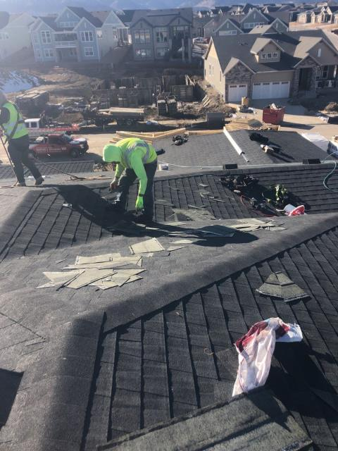 Supervising the crew here for a reroof in Arvada