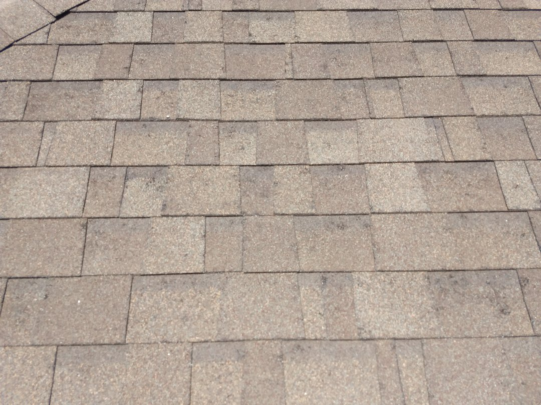 Lubbock, TX - Roof estimate for hail damage to asphalt shingles