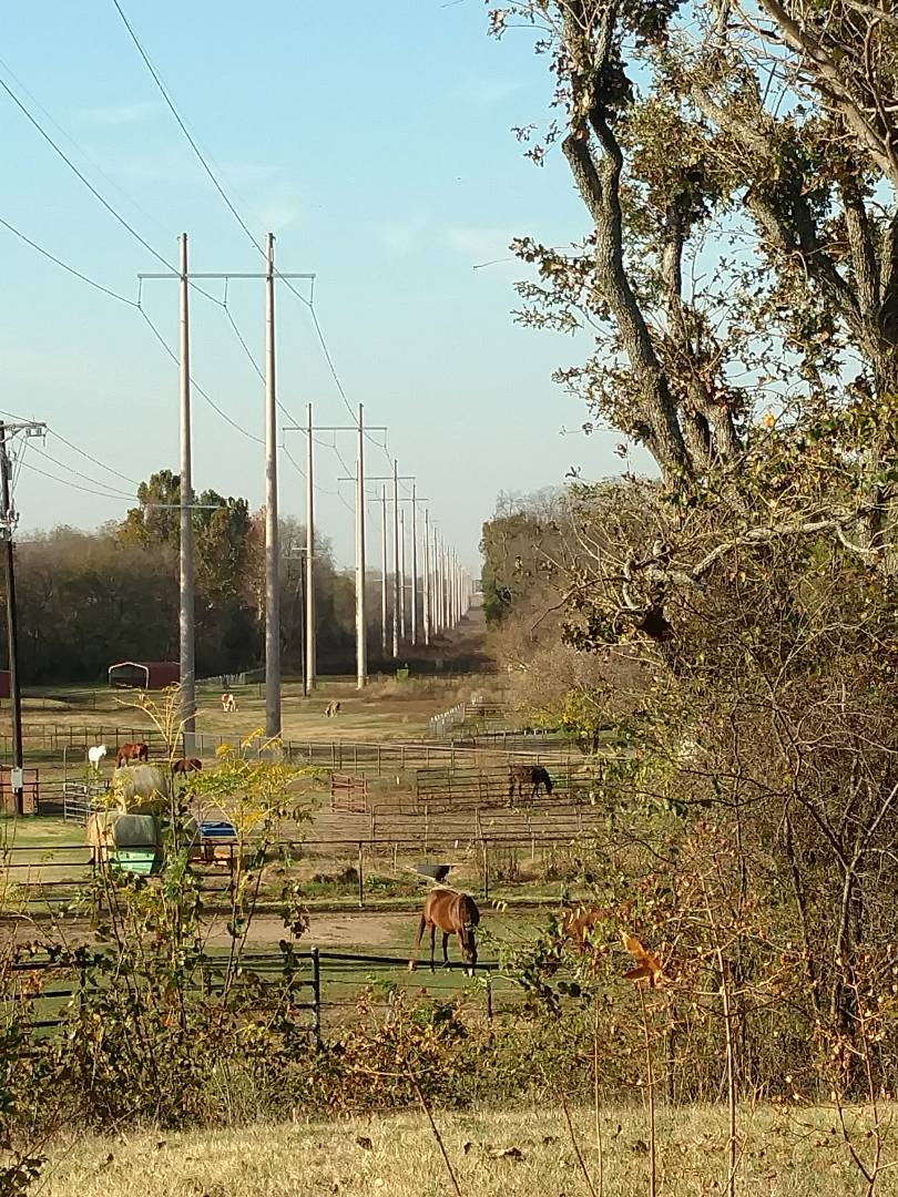 Aubrey, TX - Clearing a mini-split drain in Aubrey. Nice view from here