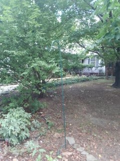"""Arnold, MD - Replaced a 2"""" PVC trap for a water conditioner"""