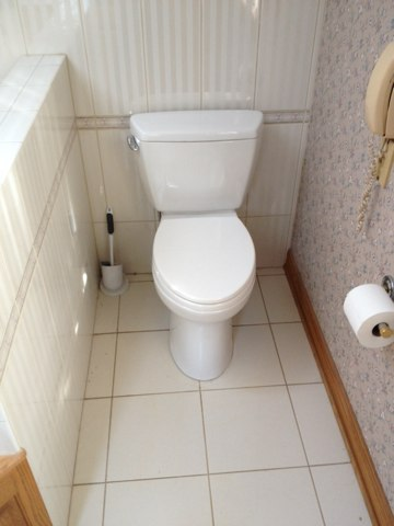 Frankfort, IL - Installed 5 new toto toilets throughout the house