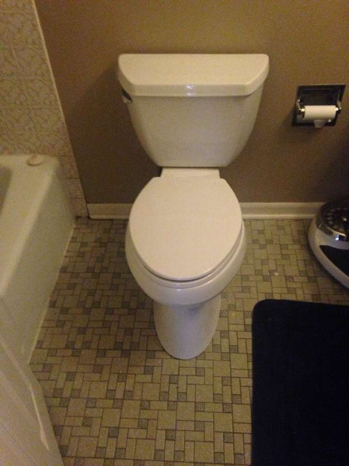 Naperville, IL - Installed two new kohler toilets