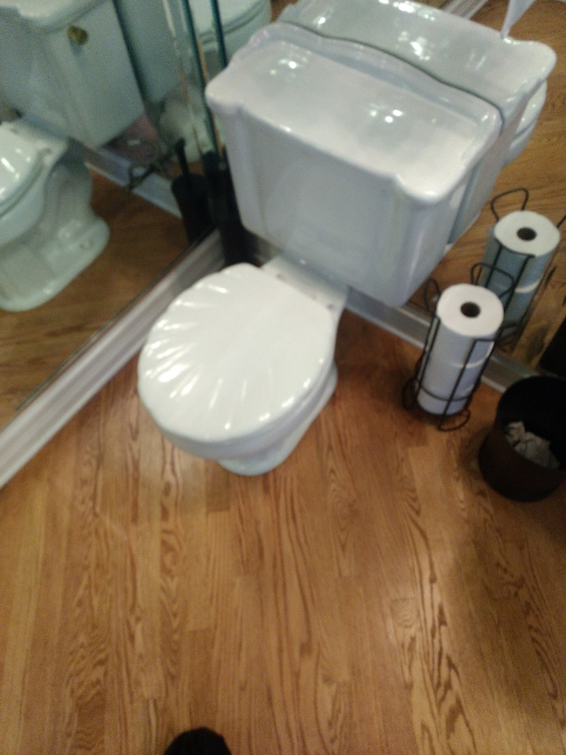 Romeoville, IL - Installed new toilet flapper in Plainfield.