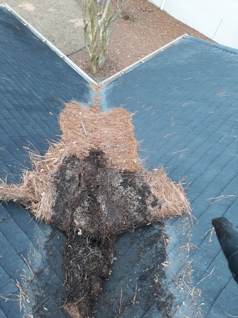 Aiken, SC - South Point Roofing and Construction is repairing a roof leak and blowing pine straw off the roof in Aiken, SC.