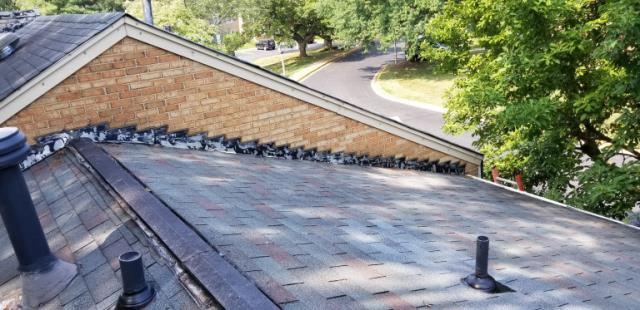 Springfield, VA - Townhouse free roof estimate for tree damage and lifted shingles. We recommended GAF HD shingles.