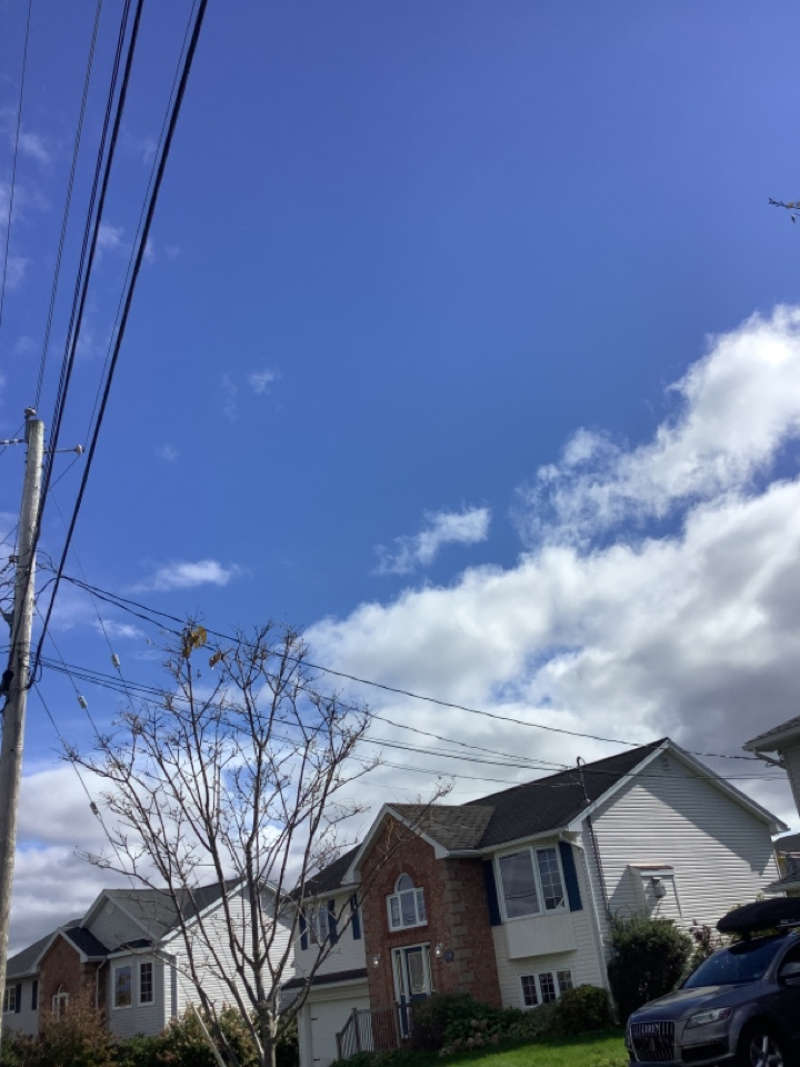 Forest Hills, NS - Going to be starting roof repair next week