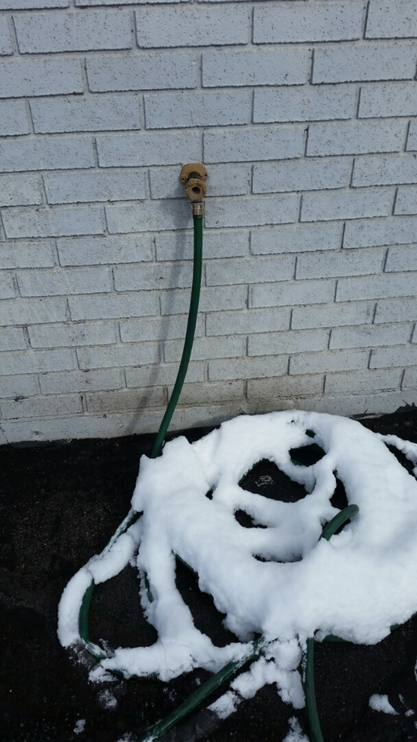 Layton, UT - It's still winter and freeze damage is still possible. Leaving a hose attached during freezing temperatures is not a good idea. The pipe inside the wall could still freeze even if it is a self draining faucet if you leave the hose attached. 801-294-7452 http://www.thefloodco.com/layton-utah.html