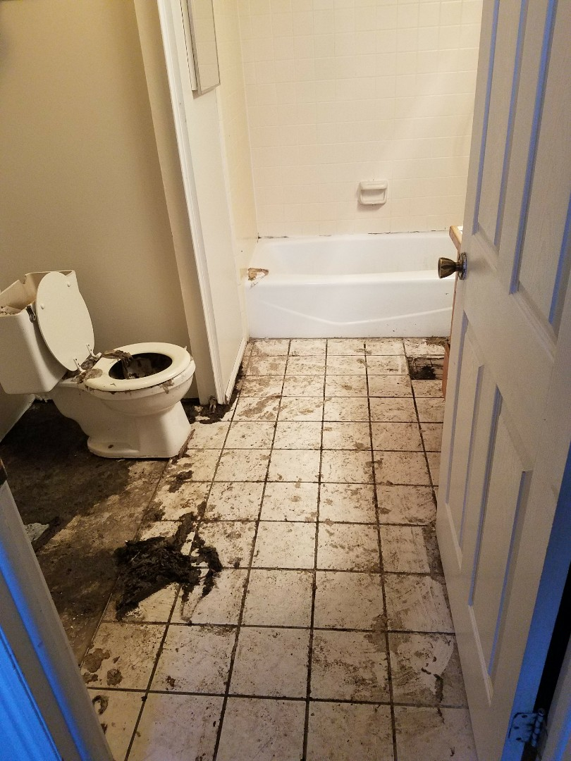 Ogden, UT - Sewage Cleanup in Ogden Utah. This is a cute little rental property it's been vacant for a few days and the owners found this sewer backup. It has been going on for a few days there's a lot of damage it's nearly the entire unit that's affected. We're working with the brother to get it cleaned up the owner is actually out of the country for a few months.