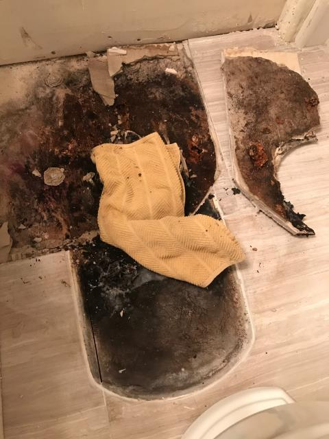 San Diego, CA - Toilet wax ring failure caused water damage and mold growth. Performed water and mold mitigation and remediation services.