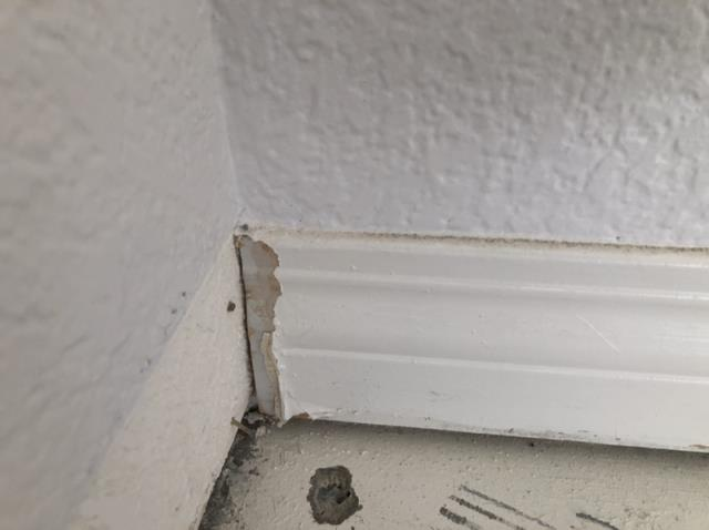 Ramona, CA - Performed restoration services to flooring and ceiling after a water damage loss.