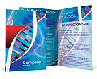 DNA Brochure Template