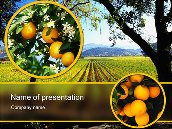 Field PowerPoint Template