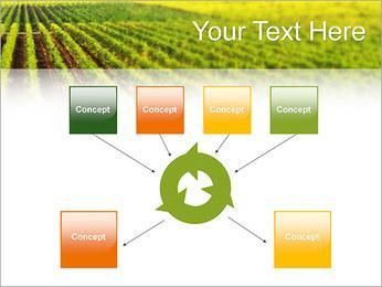 Domaine Modèles des présentations  PowerPoint - Diapositives 10