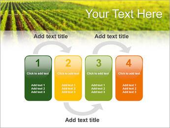 Domaine Modèles des présentations  PowerPoint - Diapositives 11