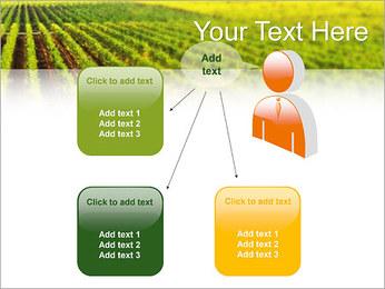 Domaine Modèles des présentations  PowerPoint - Diapositives 12