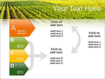 Domaine Modèles des présentations  PowerPoint - Diapositives 16
