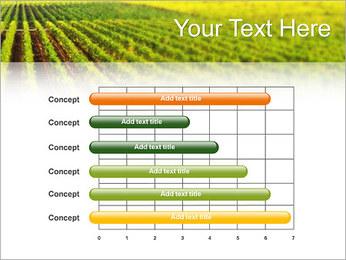 Domaine Modèles des présentations  PowerPoint - Diapositives 17