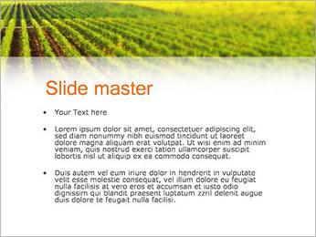 Domaine Modèles des présentations  PowerPoint - Diapositives 2
