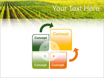 Domaine Modèles des présentations  PowerPoint - Diapositives 5