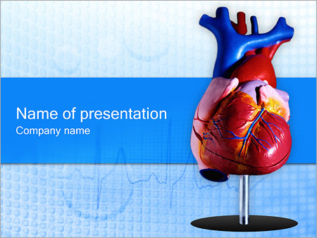 Human biology powerpoint templates backgrounds google slides heart model powerpoint template toneelgroepblik Images