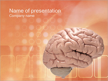 Brain PowerPoint Template Backgrounds ID 0000000179 – Brain Powerpoint Template