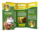 Baseball Brochure Templates