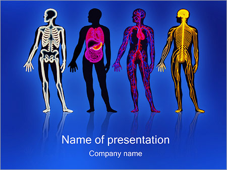 Systems of body powerpoint template backgrounds google slides systems of body powerpoint template toneelgroepblik Choice Image