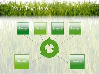 Agronomie Modèles des présentations  PowerPoint - Diapositives 10