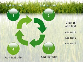 Agronomie Modèles des présentations  PowerPoint - Diapositives 14