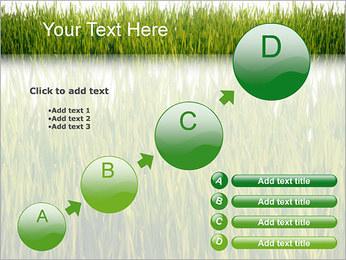 Agronomie Modèles des présentations  PowerPoint - Diapositives 15
