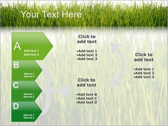 Agronomie Modèles des présentations  PowerPoint - Diapositives 16