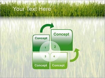 Agronomie Modèles des présentations  PowerPoint - Diapositives 5