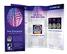 Brain Brochure Template