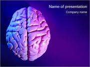 Hersenen Sjablonen PowerPoint presentatie