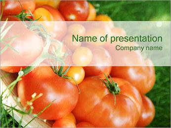 Tomate Modèles des présentations  PowerPoint - Diapositives 1