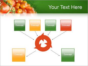 Tomate Modèles des présentations  PowerPoint - Diapositives 10