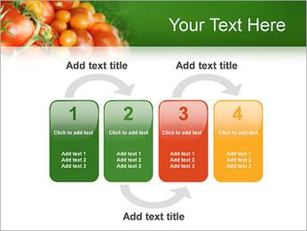 Tomate Modèles des présentations  PowerPoint - Diapositives 11