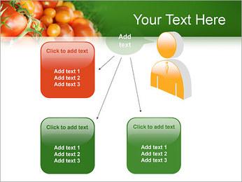 Tomate Modèles des présentations  PowerPoint - Diapositives 12