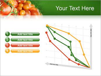 Tomate Modèles des présentations  PowerPoint - Diapositives 13
