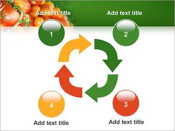 Tomate Modèles des présentations  PowerPoint - Diapositives 14