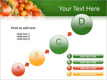 Tomate Modèles des présentations  PowerPoint - Diapositives 15