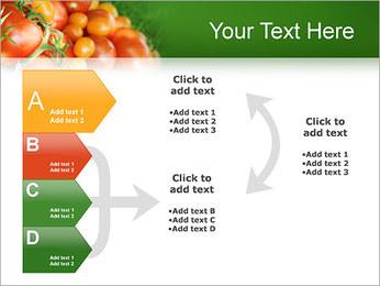 Tomate Modèles des présentations  PowerPoint - Diapositives 16