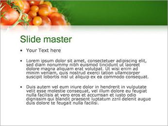 Tomate Modèles des présentations  PowerPoint - Diapositives 2