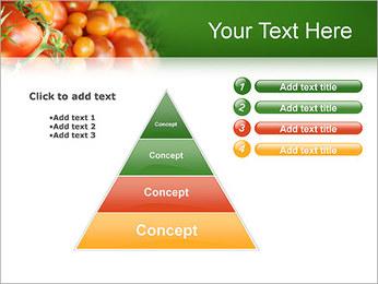 Tomate Modèles des présentations  PowerPoint - Diapositives 22